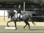Cavalga ratsastus